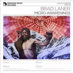 Micro-Awakenings