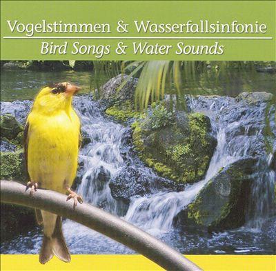 Vogelstimmen und Wassersinfonie