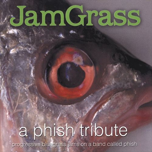 Jamgrass: Phish