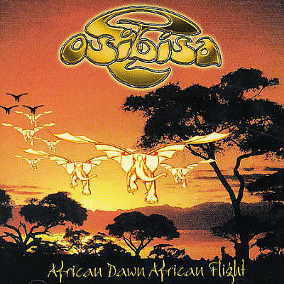 African Dawn African Flight