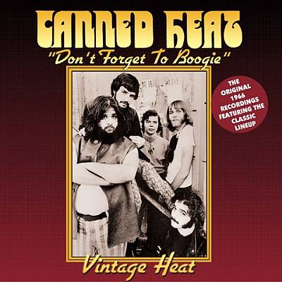 Don't Forget to Boogie: Vintage Heat