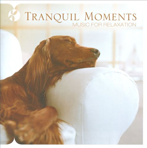 Tranquil Moments [Reflections]