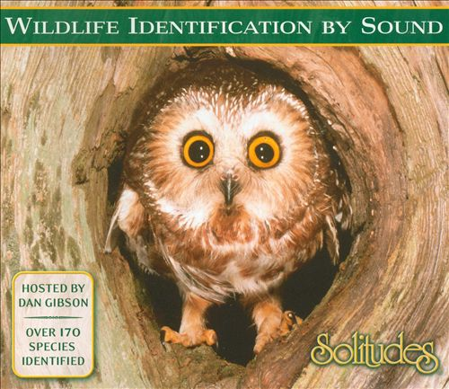 Solitudes: Wildlife Identification by Song