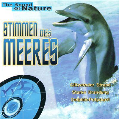 Stimmen des Meeres