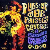 Pull Up the Paisley Covers: A Psychedelic Omnibus