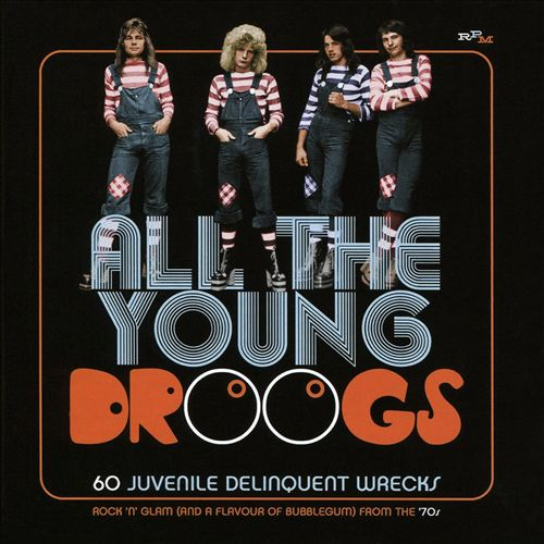 All the Young Droogs: 60 Juvenile Delinquent Wrecks, Rock 'N' Glam (And a Flavour of Bubblegum) from the 70's