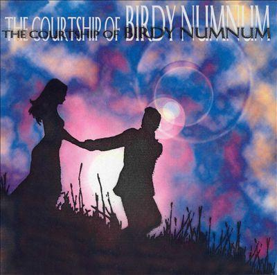 The Courtship of Birdy Numnum