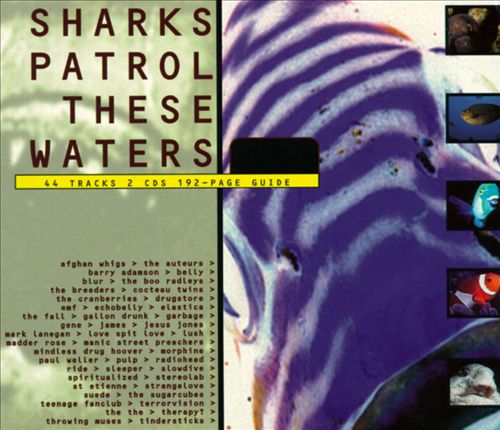 Sharks Patrol These Waters