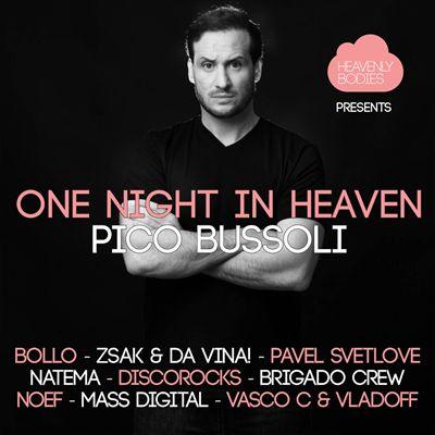 One Night in Heaven, Vol. 13