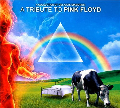 A Collection of Delicate Diamonds: A Tribute To Pink Floyd