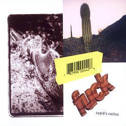Cupid's Cactus