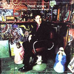 What I Did After My Band Broke Up: The Best of Steve Wynn/Visitation Rights
