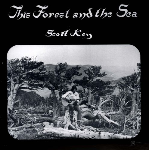 This Forest and the Sea