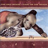 Giant on the Beach