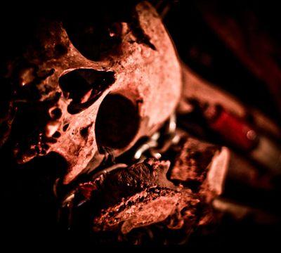 Funeral in Heaven/Plecto Aliqu