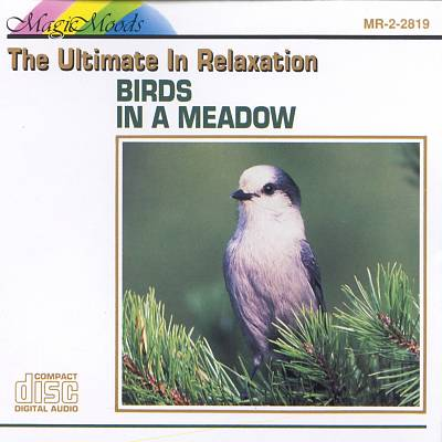 Ultimate in Relaxation: Birds in a Meadow