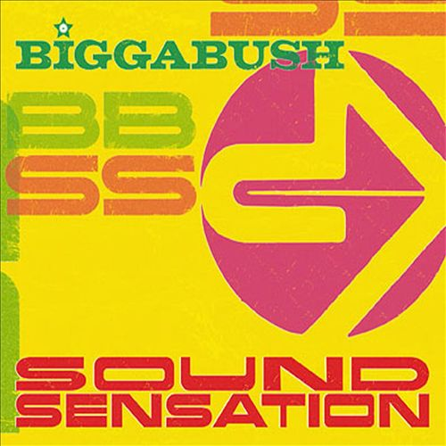 Bigga Bush Sound Sensation