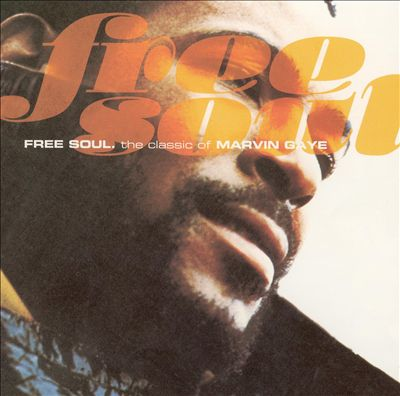 Free Soul: The Classics of Marvin Gaye