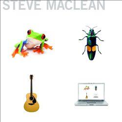 Frog Bug Guitar Computer